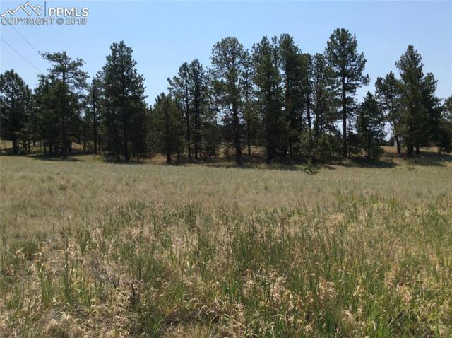 484 Due South Road, Florissant, CO 80816 (#4744653) :: Action Team Realty