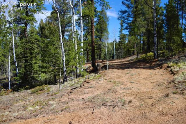 403 Woody Creek Road, Divide, CO 80814 (#4746842) :: Action Team Realty