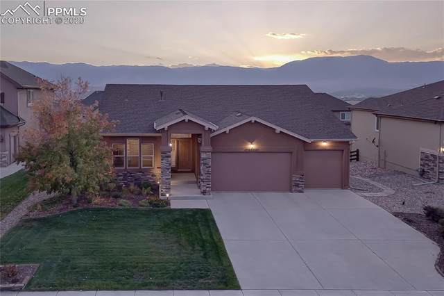 16688 Curled Oak Drive, Monument, CO 80132 (#4748605) :: Tommy Daly Home Team