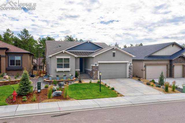 16525 Dancing Bear Lane, Monument, CO 80132 (#4750955) :: Tommy Daly Home Team