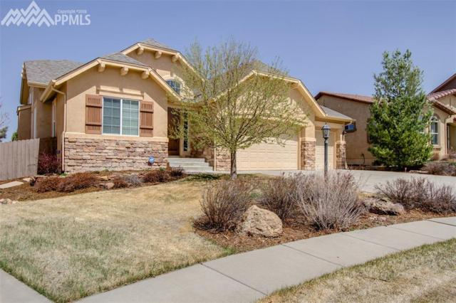 9587 Lizard Rock Trail, Colorado Springs, CO 80924 (#4751096) :: 8z Real Estate