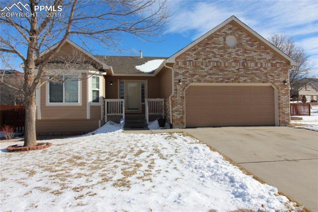 10205 Monmouth Lane, Colorado Springs, CO 80920 (#4751885) :: 8z Real Estate