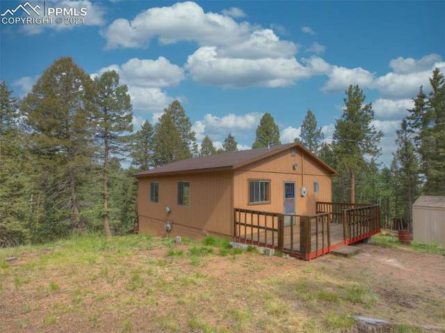 167 Pawutsy Road, Florissant, CO 80816 (#4751976) :: Action Team Realty