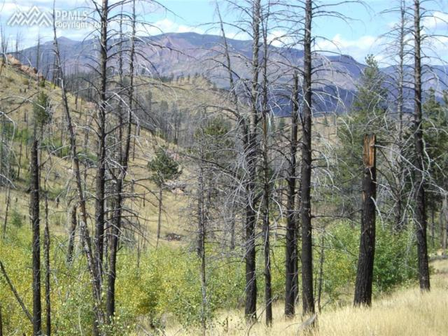 TBD Deer Creek Drive, Lake George, CO 80827 (#4752738) :: The Hunstiger Team