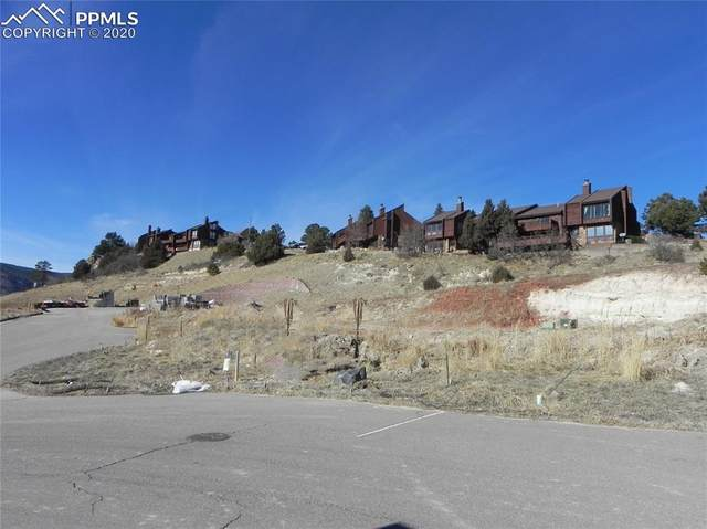 4462 Echo Drive, Larkspur, CO 80118 (#4760818) :: Finch & Gable Real Estate Co.