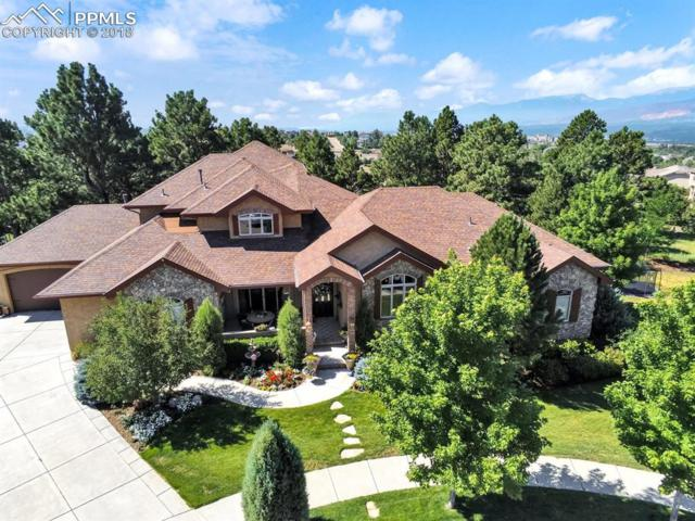 1659 Oakmont Drive, Colorado Springs, CO 80921 (#4762924) :: Venterra Real Estate LLC