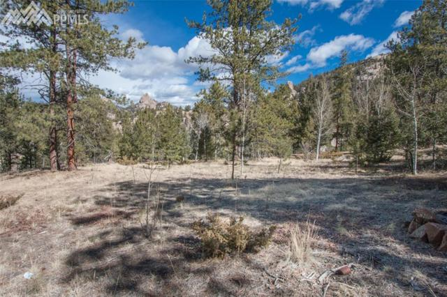 622 Lookout Road, Cripple Creek, CO 80813 (#4763043) :: The Peak Properties Group