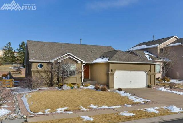 1642 Lookout Springs Drive, Colorado Springs, CO 80921 (#4764039) :: 8z Real Estate