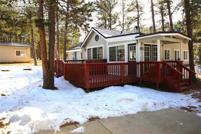 95 Homestead Lane, Florissant, CO 80816 (#4764323) :: Jason Daniels & Associates at RE/MAX Millennium