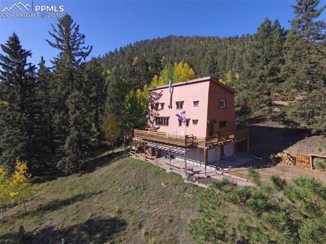 98 Andes Road, Cripple Creek, CO 80813 (#4765551) :: 8z Real Estate