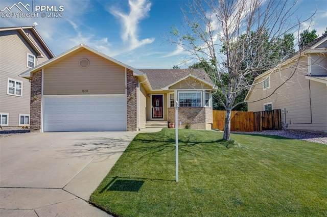 1510 Bear Cloud Drive, Colorado Springs, CO 80919 (#4768812) :: Finch & Gable Real Estate Co.
