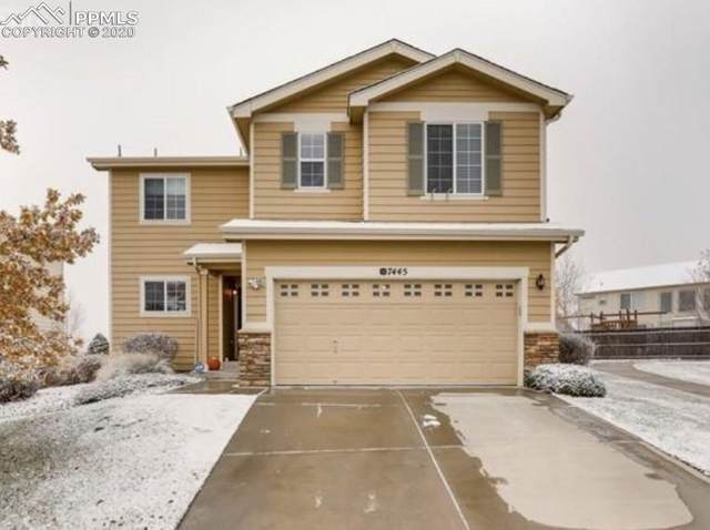 7445 Forest Falcon View, Colorado Springs, CO 80922 (#4770350) :: CC Signature Group
