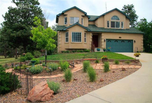 11265 S Holmes Road, Colorado Springs, CO 80908 (#4771670) :: The Peak Properties Group