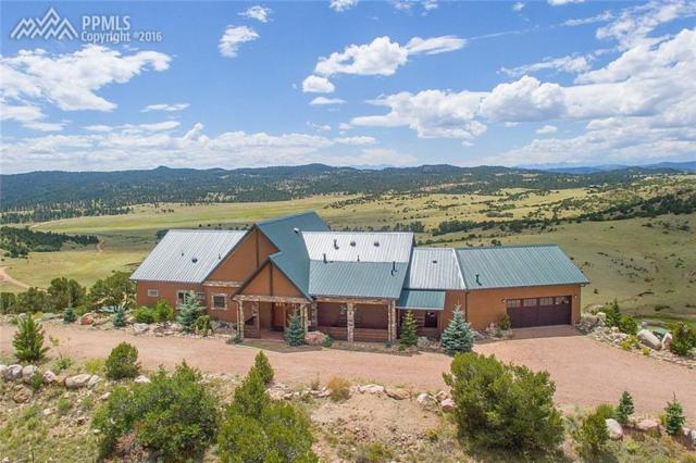 202 Henry Trail, Canon City, CO 81212 (#4774623) :: 8z Real Estate