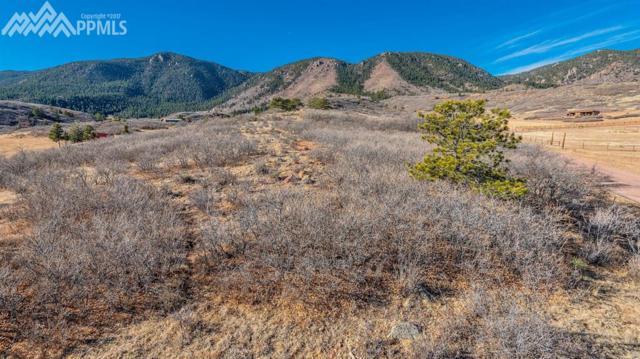 TBD Green Mountain Drive, Colorado Springs, CO 80921 (#4777228) :: 8z Real Estate