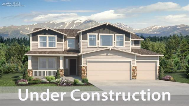 3101 Lakefront Drive, Monument, CO 80132 (#4777423) :: 8z Real Estate