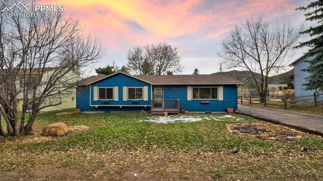 77 Lower Glenway Street, Palmer Lake, CO 80133 (#4780050) :: Action Team Realty