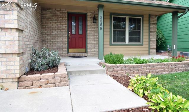 5066 Plumstead Drive, Colorado Springs, CO 80920 (#4780563) :: The Peak Properties Group