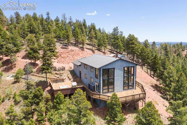 13237 Deer Ridge Way, Larkspur, CO 80118 (#4784638) :: Tommy Daly Home Team