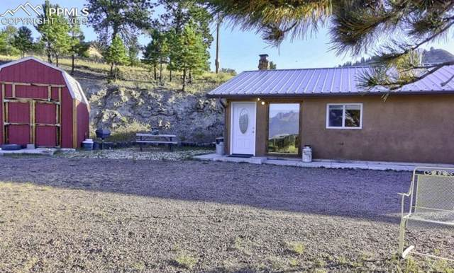 7011 County 328 Road, Westcliffe, CO 81252 (#4791546) :: CC Signature Group