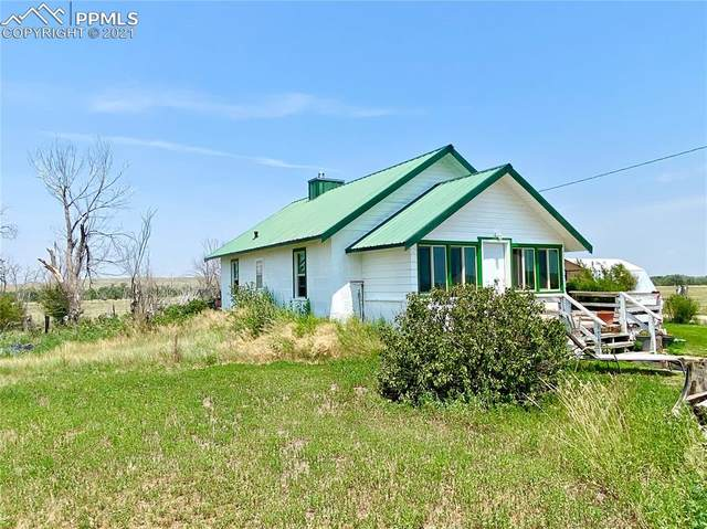 37509 Highway 24, Matheson, CO 80830 (#4794362) :: Tommy Daly Home Team