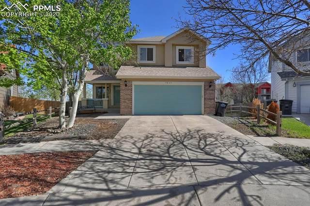 4615 Double Lasso Court, Colorado Springs, CO 80922 (#4796982) :: Finch & Gable Real Estate Co.