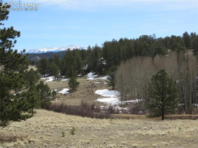 1562 County 403 Road, Lake George, CO 80827 (#4801899) :: Compass Colorado Realty
