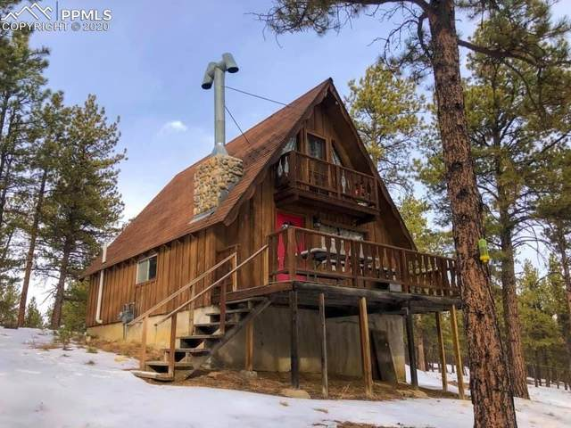 77 Tardiff Way, Florissant, CO 80816 (#4808433) :: 8z Real Estate
