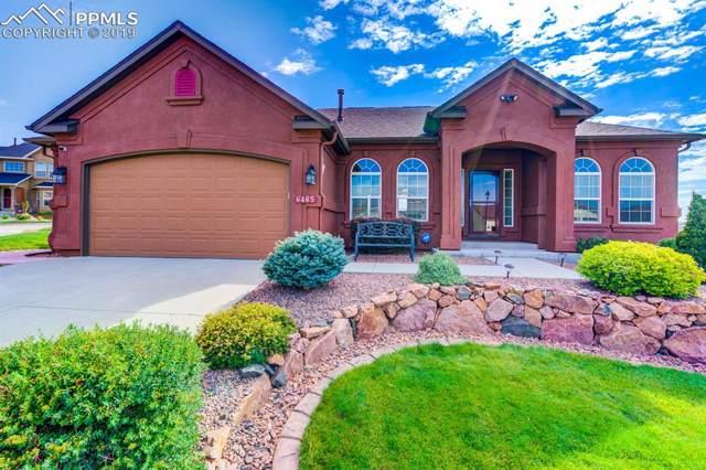 6465 Coyote Ridge Court, Colorado Springs, CO 80923 (#4808491) :: 8z Real Estate