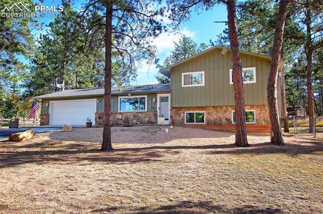 575 Sunnywood Lane, Woodland Park, CO 80863 (#4810202) :: Perfect Properties powered by HomeTrackR