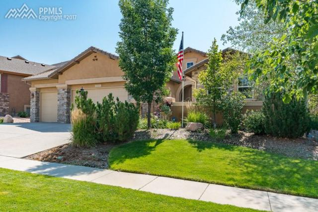 10121 Oak Knoll Terrace, Colorado Springs, CO 80920 (#4813678) :: Jason Daniels & Associates at RE/MAX Millennium