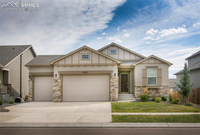 7031 Thorn Brush Way, Colorado Springs, CO 80923 (#4815263) :: 8z Real Estate