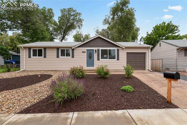 1036 Mt. Werner Circle, Colorado Springs, CO 80905 (#4816293) :: Tommy Daly Home Team