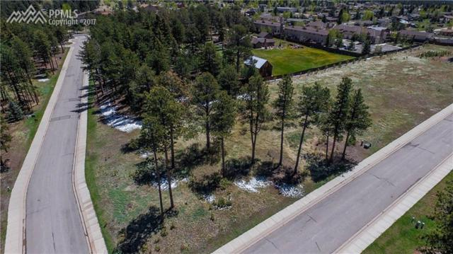 1235 Cottontail Trail, Woodland Park, CO 80863 (#4816494) :: Jason Daniels & Associates at RE/MAX Millennium