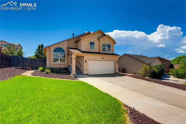 4149 Nyala Drive, Colorado Springs, CO 80922 (#4818107) :: The Daniels Team
