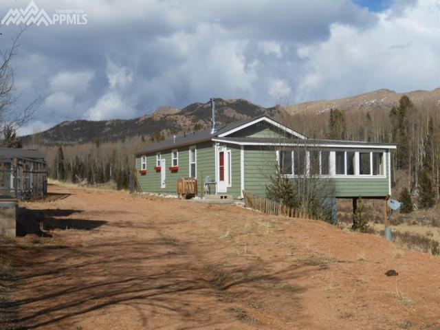 11965 S Highway 67, Cripple Creek, CO 80813 (#4818279) :: The Peak Properties Group