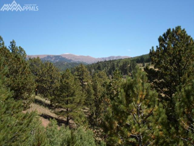 220 Tuscanora Drive, Cripple Creek, CO 80813 (#4821405) :: 8z Real Estate