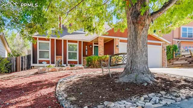 5429 Tennessee Pass Drive, Colorado Springs, CO 80917 (#4823812) :: Tommy Daly Home Team