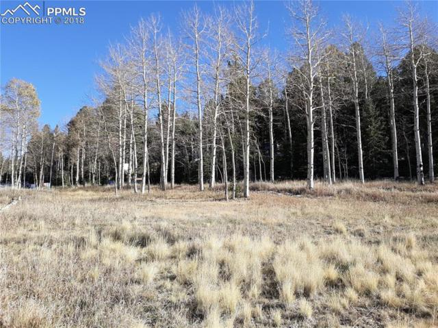 61 Will Stutley Drive, Divide, CO 80814 (#4824121) :: Venterra Real Estate LLC