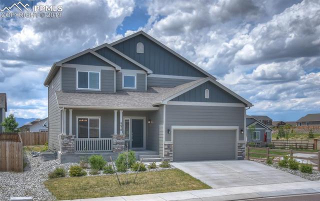 6670 Big George Drive, Colorado Springs, CO 80923 (#4824912) :: HomePopper