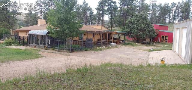 13549 Old Timer Trail, Woodland Park, CO 80863 (#4830806) :: HomeSmart