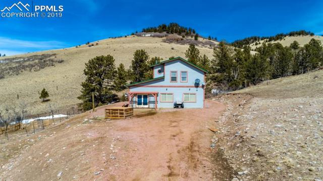 7029 Autumn Creek Drive, Canon City, CO 81212 (#4835456) :: CC Signature Group