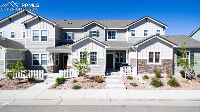 8866 Bella Flora Heights, Colorado Springs, CO 80924 (#4838668) :: The Treasure Davis Team