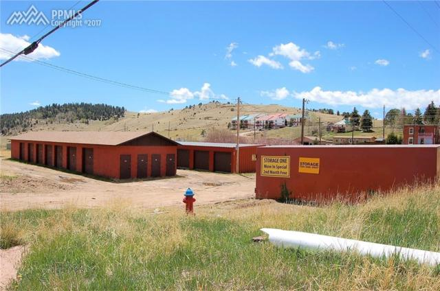 410 Xenia Avenue, Cripple Creek, CO 80813 (#4845689) :: 8z Real Estate