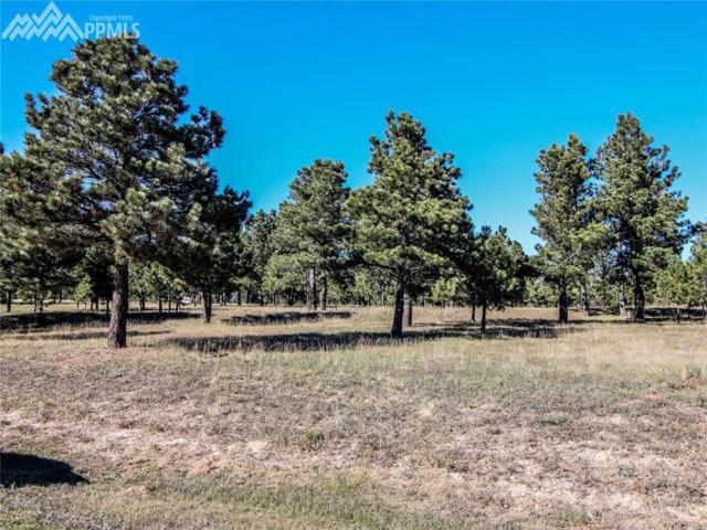 730 W Lancers Court, Monument, CO 80132 (#4846262) :: 8z Real Estate