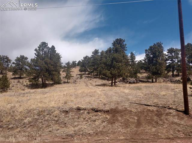 89 Peak Drive, Guffey, CO 80820 (#4846308) :: CC Signature Group