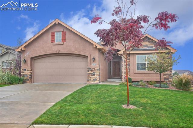 3001 Sovereign View, Colorado Springs, CO 80920 (#4846707) :: Action Team Realty