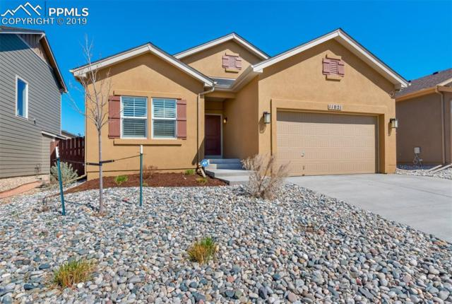 11021 Echo Canyon Drive, Colorado Springs, CO 80908 (#4849938) :: Compass Colorado Realty