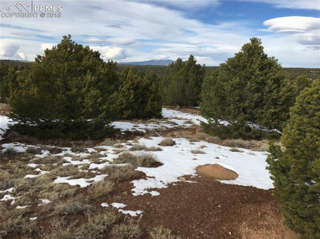Comanche Drive, Walsenburg, CO 81089 (#4854778) :: CC Signature Group