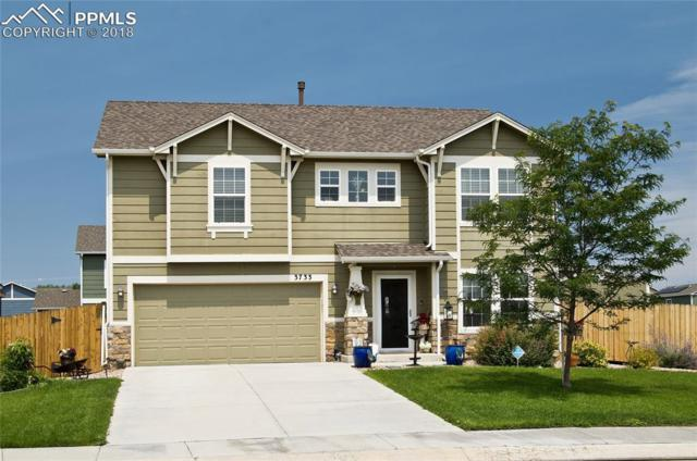 3733 Winter Sun Drive, Colorado Springs, CO 80925 (#4854993) :: Harling Real Estate